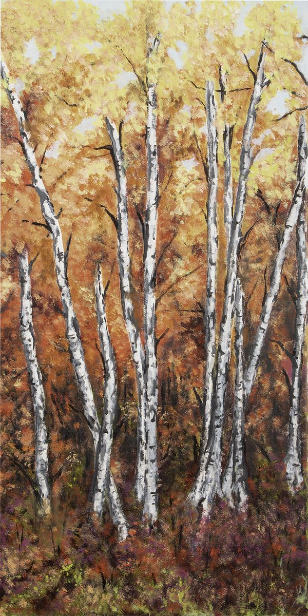 Birch Stand in Autumn