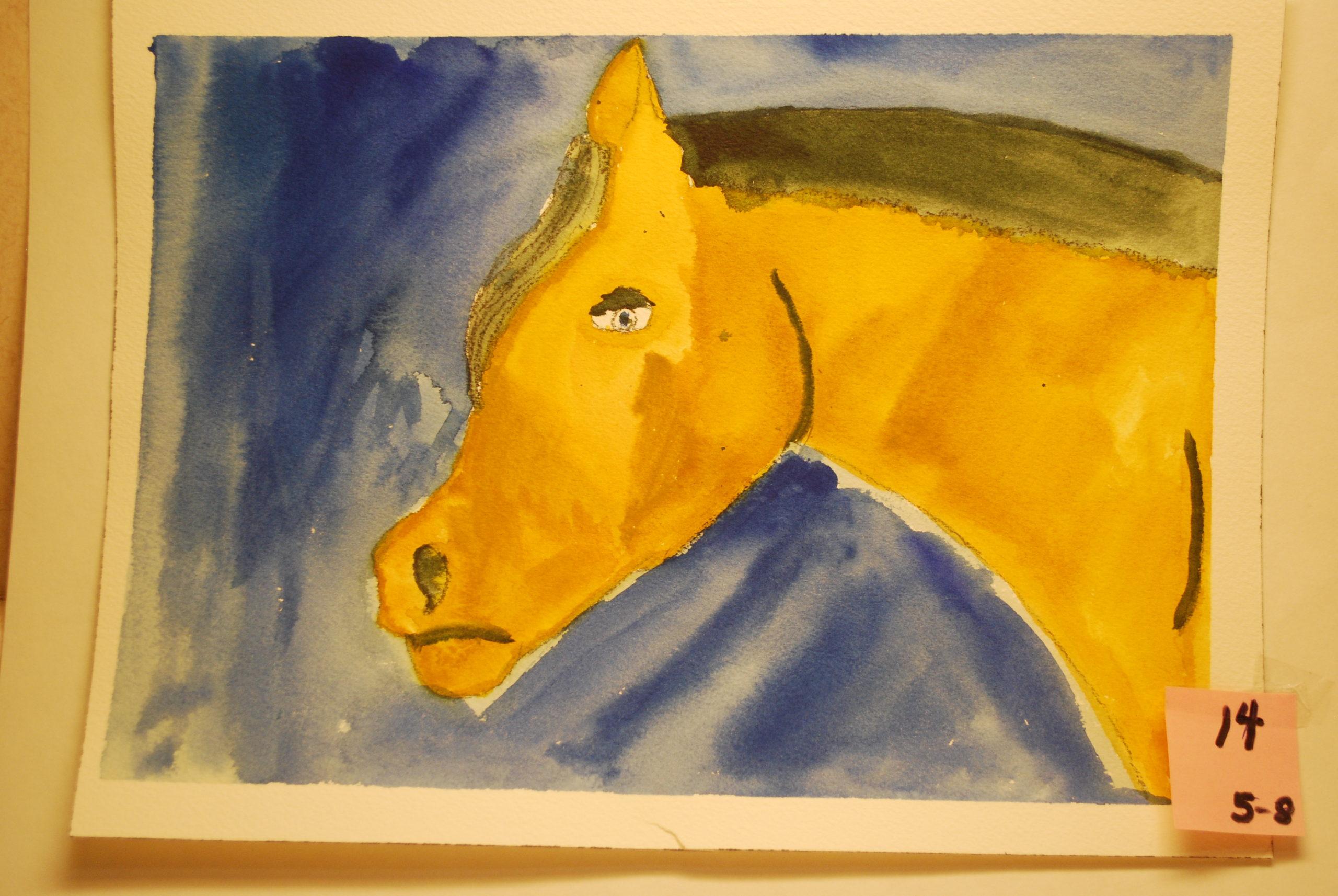 YAC 2020 #14 5-8 Yellow Horse b