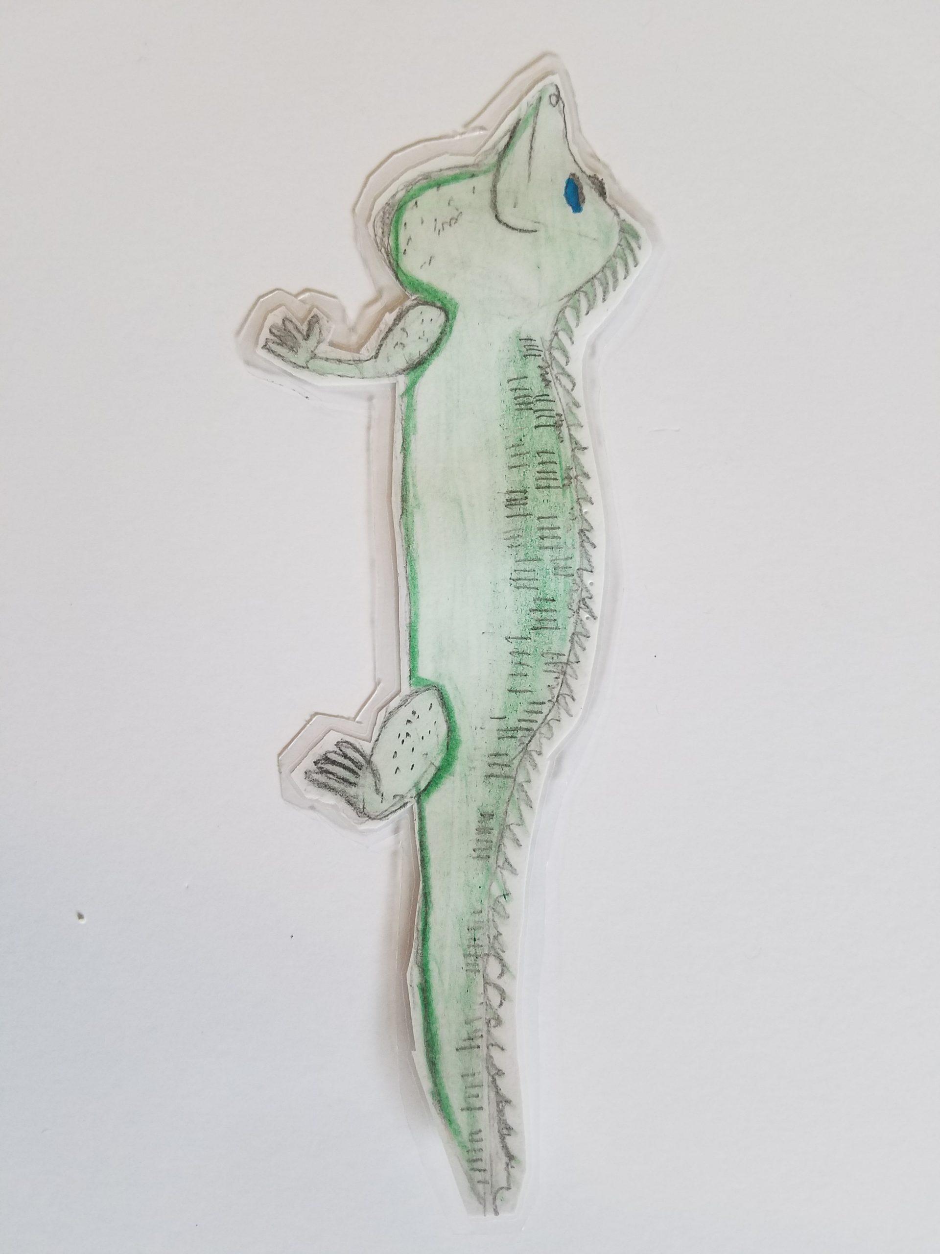YAC 2020 #31 5-8 chameleon
