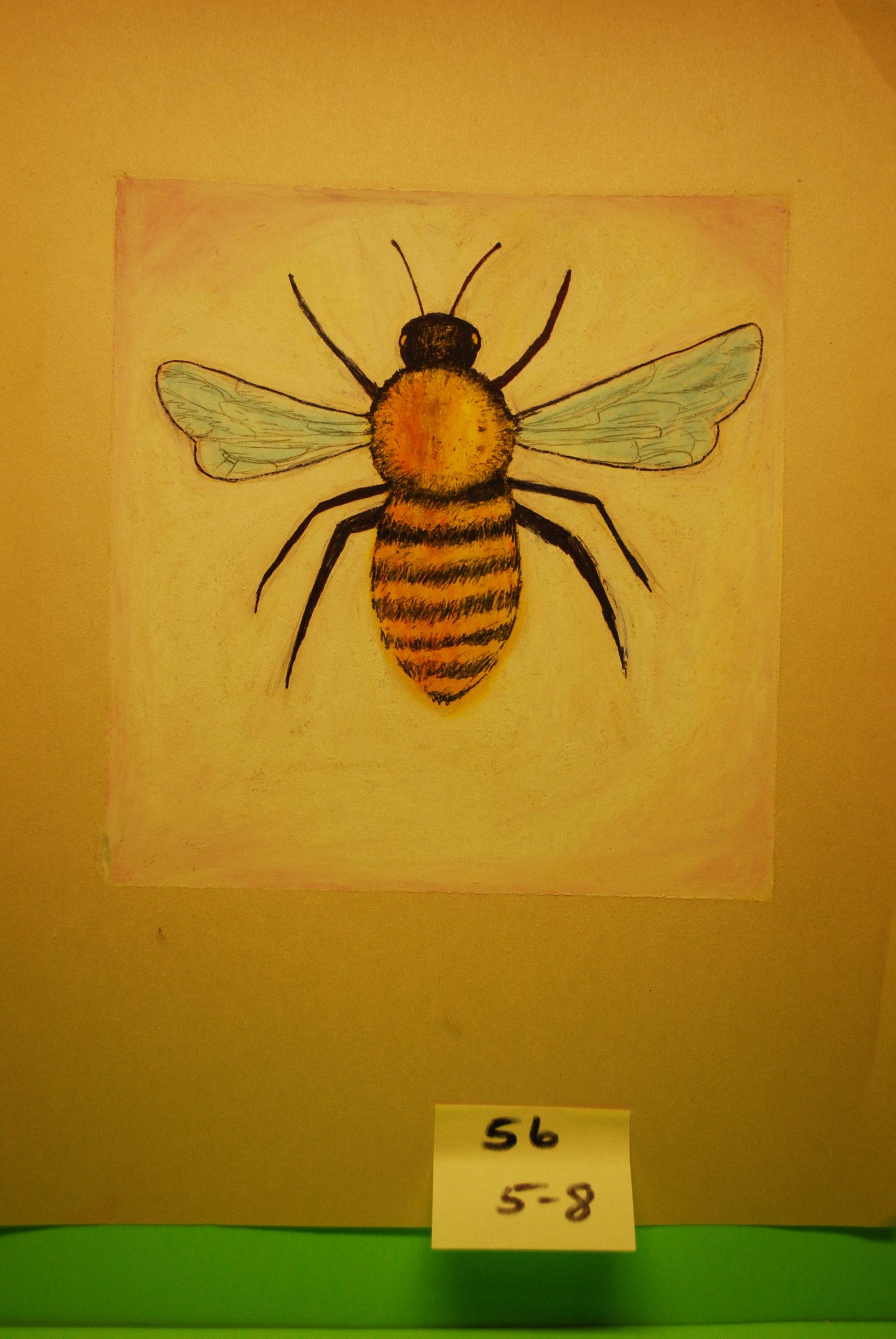 YAC 2020 #56 5-8 Bee b