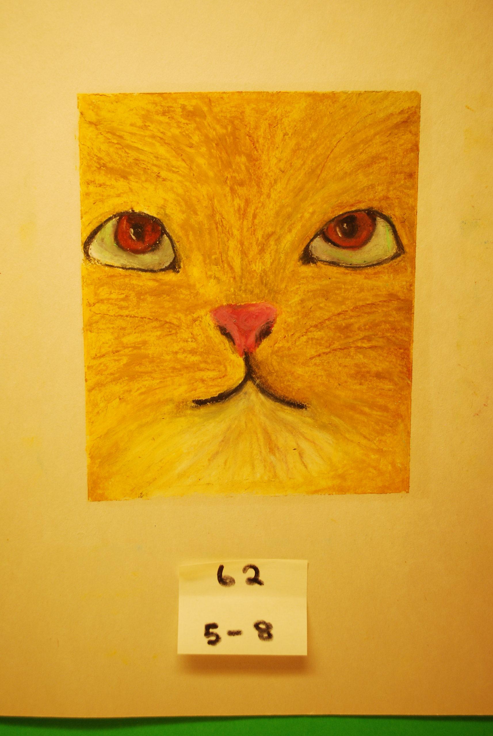 YAC 2020 #62 5-8 Cat a
