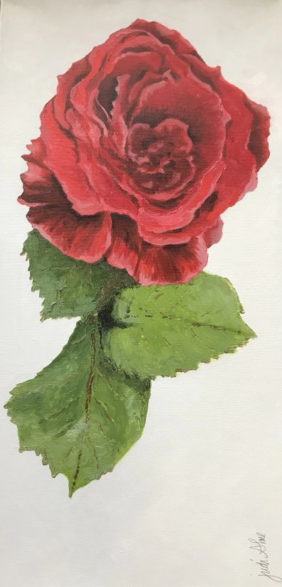 Rose in Full Bloom by Judi Alme (Oil on Canvas)