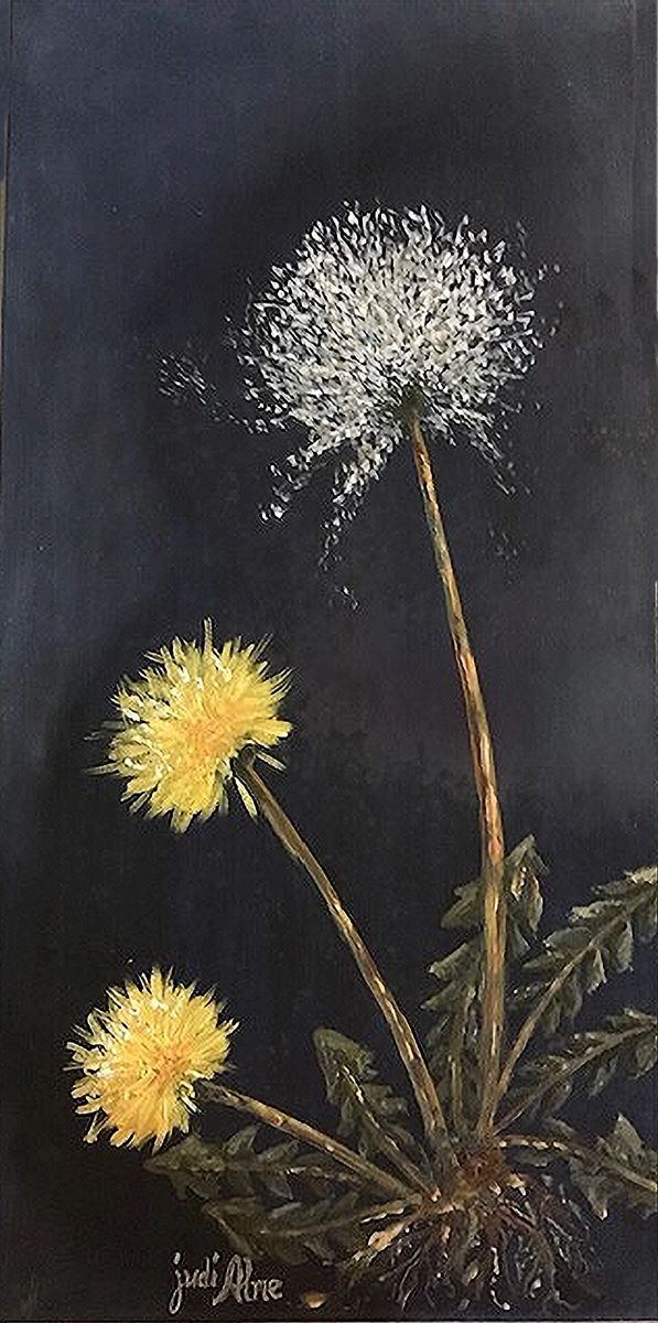 Dandy Dandylion by Judi Alme (Oil on Canvas)