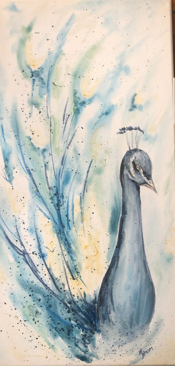 Peacock by Molly Johnson (Watercolor)