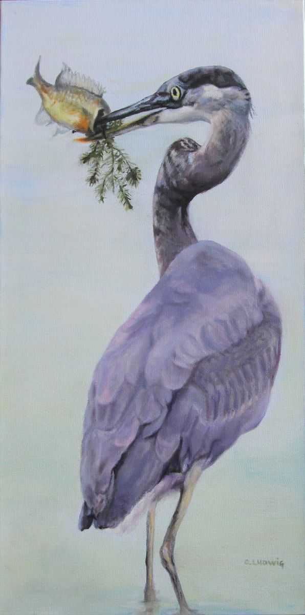 Eye on the Prize by Connie Ludwig (Oil on Canvas)